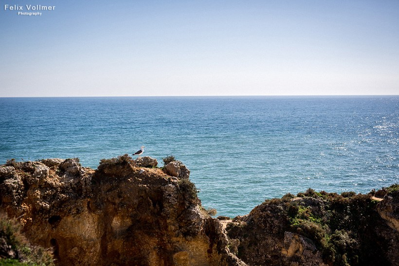 0030_Portugal_2015-02-18_25_0207_820px